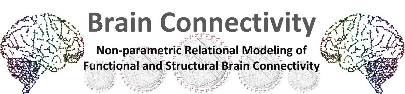brainconnectivity.compute.dtu.dk